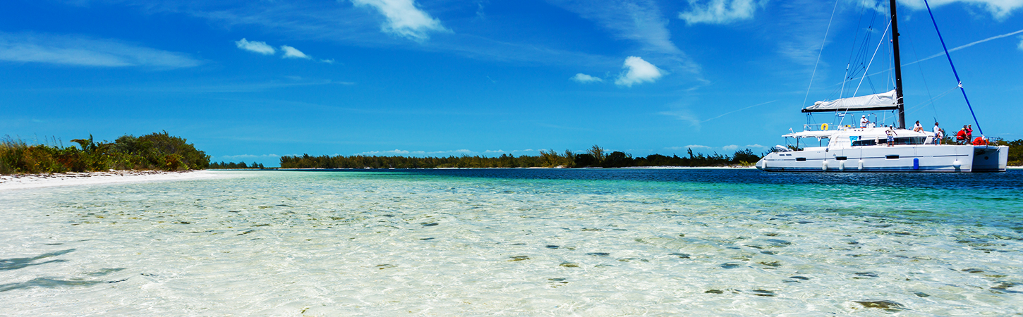 00 ready 24.12 - Journey to the Grenadines: take a walk on the wild side