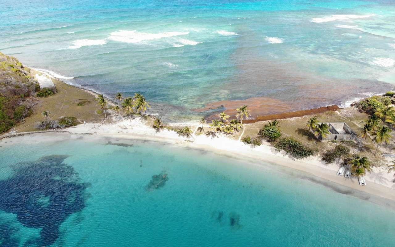 BeBlue_Grenadines_15.jpg