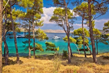 Gulet cruise: Kvarner islands, Croatia