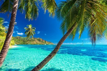 Polinesia Francese: crociera da Rangiroa in catamarano