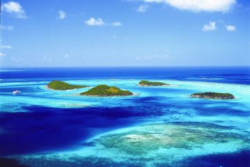 Caribbean: 10 day catamaran cruise, Grenadines and Tobago Cays