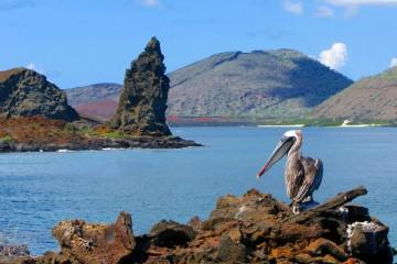 Crociera a vela: da San Blas alle Galapagos