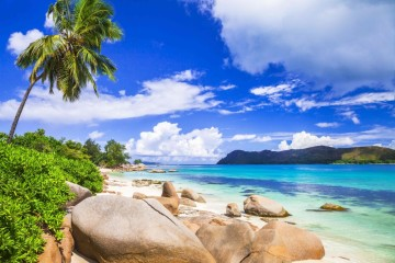 Catamaran Cruise in the Seychelles