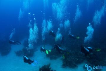 Catamaran Cruises to Cuba: Sail & Dive